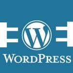 Plugin Untuk Meningkatkan Performa Website Kita di Mata Google